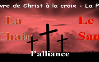 L'œuvre à la croix :       3- La chair et le sang